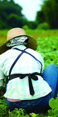 農家の写真